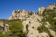 Secció Roca Roja
