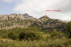 Secció Palomera