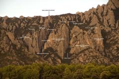 Secció Pollegons