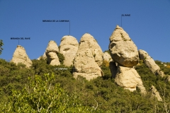 Secció Bellavista