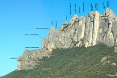Secció Saques