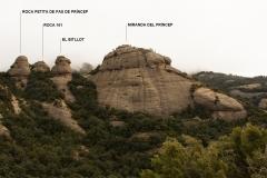 Secció Miranda del Príncep
