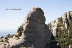 Secció Montgròs
