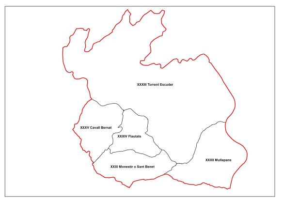 Regio seccio VI Sant Salvador dibuix