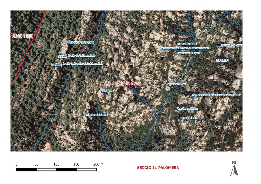 Seccio 11 Palomera 4