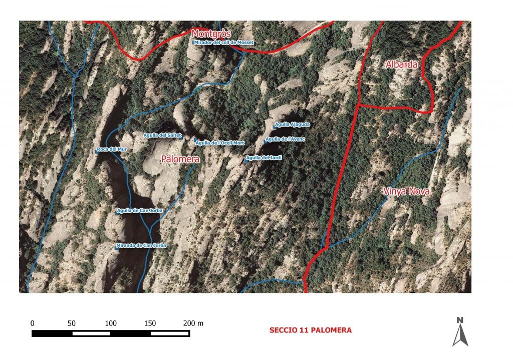 Seccio 11 Palomera 6