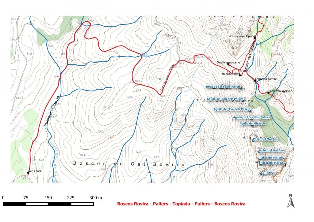 Boscos Rovira - Pallers - Tapiada - Pallers - Boscos Rovira Dibuix 1