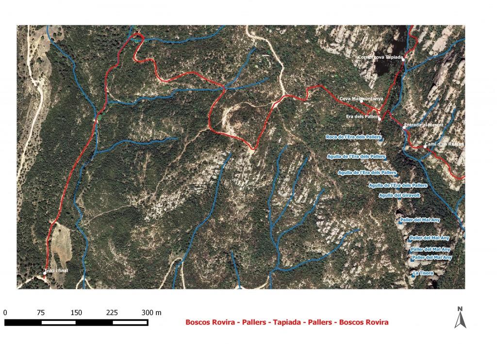 Boscos Rovira - Pallers - Tapiada - Pallers - Boscos Rovira Dibuix 3