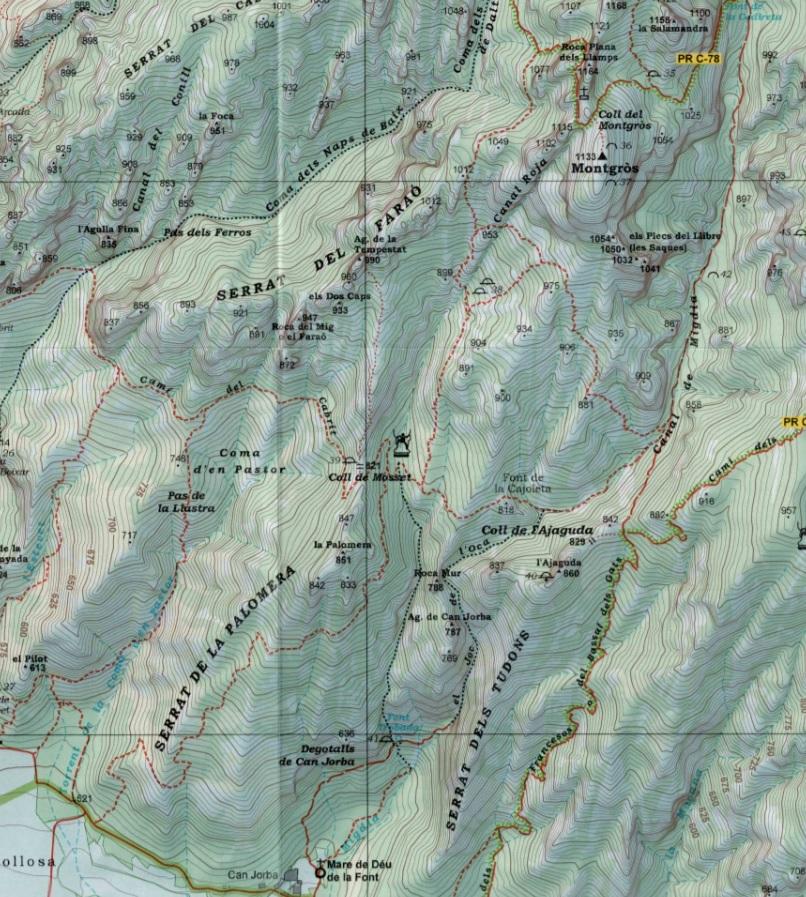Cami de la Palomera Alpina 2015