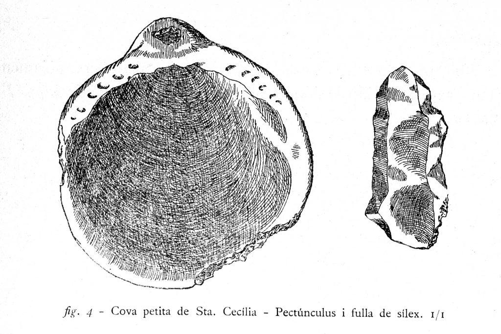 coves-santa-cecilia-016